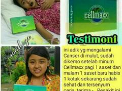 Cellmaxx 4