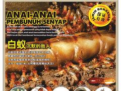 Skill termite %28dec%29 web