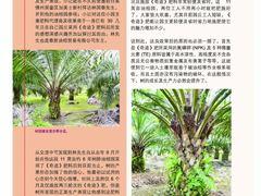Tt fertilisers.com1502422042b02c1403c4e2f34af55aabb9cdd2a735