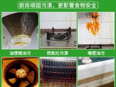 SHUAXINBAO MULTIPURPOSE FOAM CLEANER