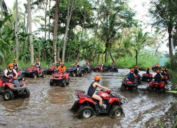 Activities in Bali