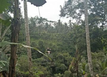 Mount Batur Sunrise Trekking With Swing at Tegalalang Ubud Bali