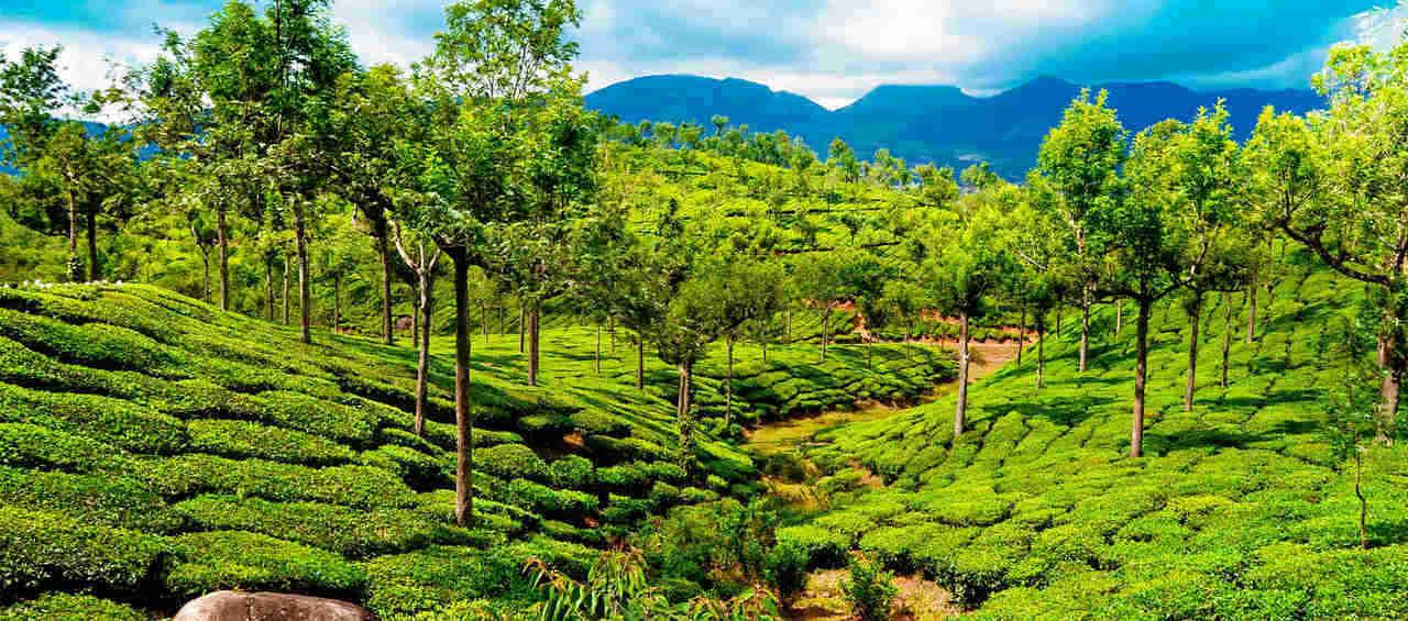 Experiance Kerala