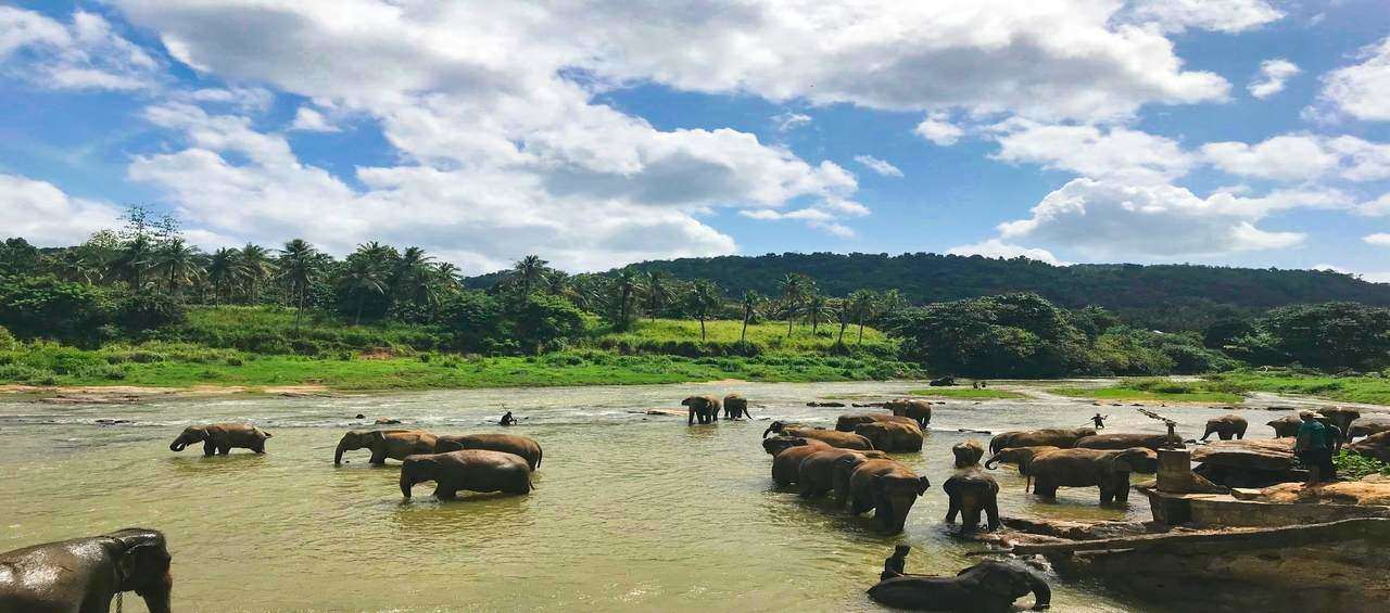 Highlights of Bentota and Colombo (Land Only)