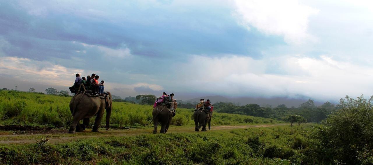 Wonders of Assam