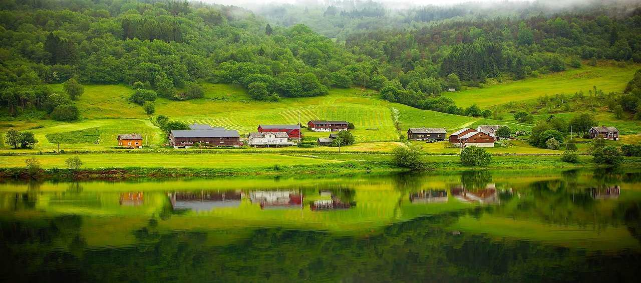Discover Fjords and More