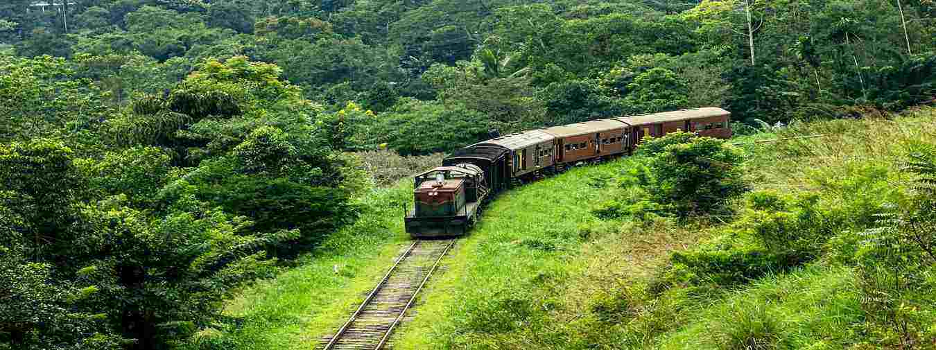 Scenic Sri Lanka with Train