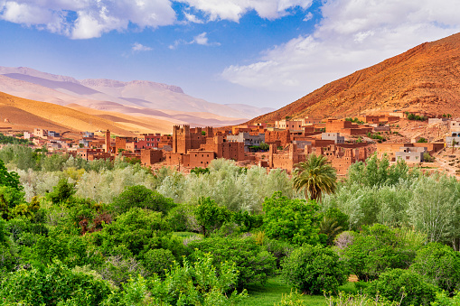Moroccan Discovery