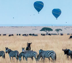 Float Over the Serengeti
