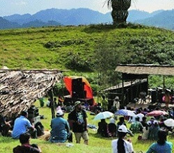 Attend the Ziro Music Festival