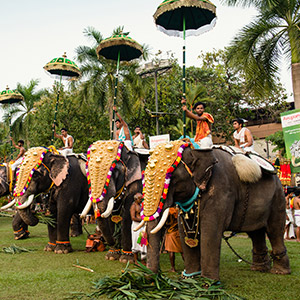 Thrissur, Kerala's Cultural Capital