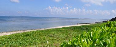 Lý Sơn, Đảo