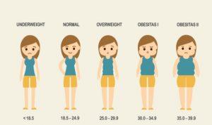 bahaya-obesitas1