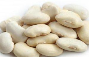 kacang-lima