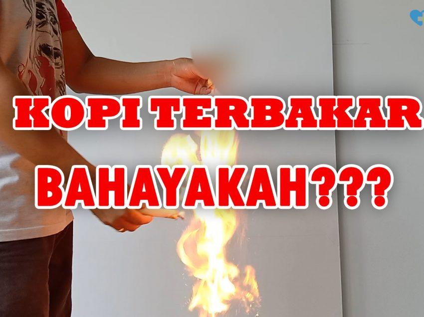Kopi Luwak Bisa Terbakar ? Ini Penjelasannya