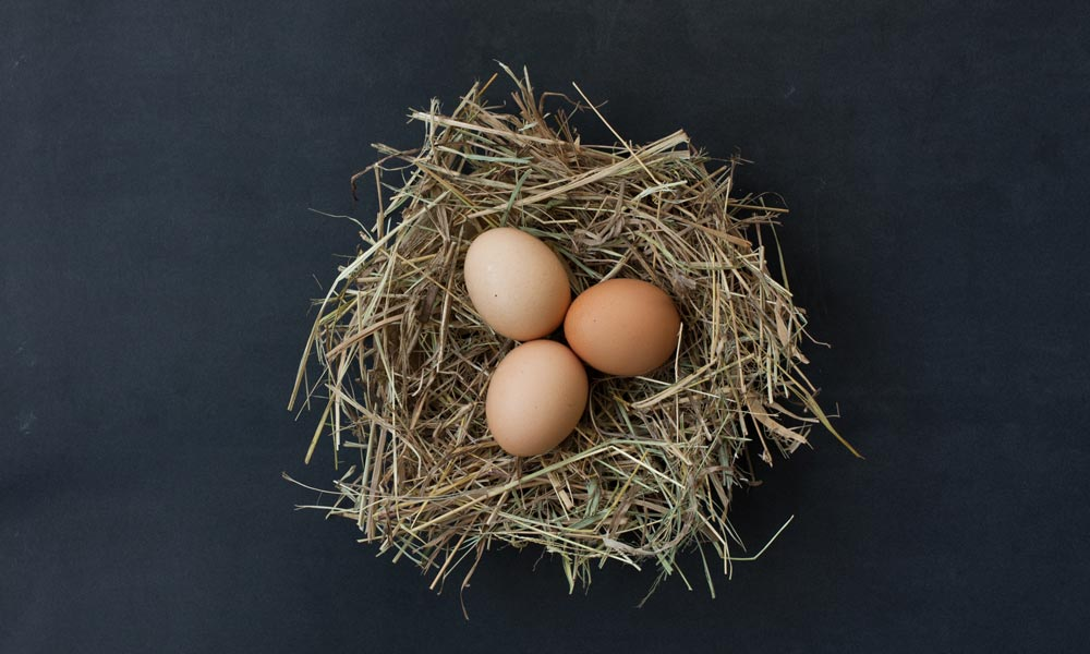 Obat Rematik Hingga Kanker Ada Di Dalam Telur Ayam Ini