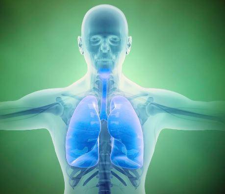 Paru Pria Ini Alami Sumbatan Darah 20 Cm, Ketahui Cara Jaga Kesehatan Paru-paru