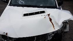 View Toyota Hilux 2014 2 Door Utility