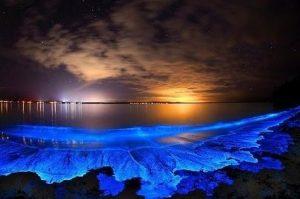 Pulau Vadhoo