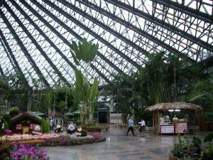 9. Yeomiji Botanical Garden