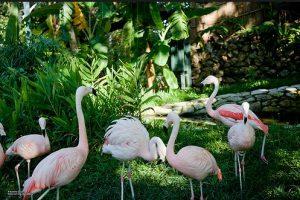 Shousan Zoo