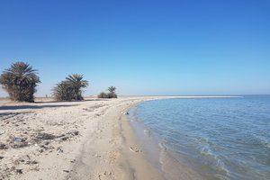 Wisata di kota Al Hofuf