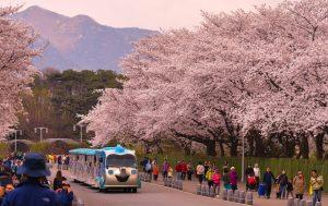 seoul national grand park