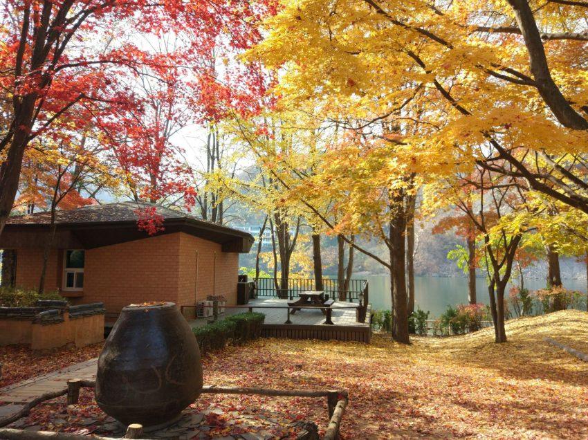 Pulau Nami Korea Selatan , Wisata Alam Terfavorit Wisatawan