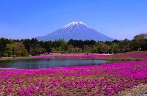 Fuji-Motosuko