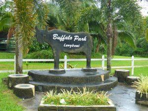 buffalo-park