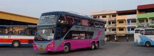 transportasi-bus