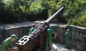 Cannon-fort