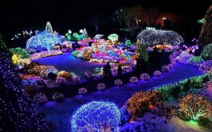 Kunjungi Gemerlap Lighting di Musim Dingin