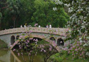 guangzhou.4