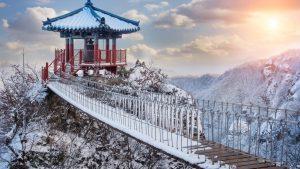 tempat-wisata-korea-jeju-island