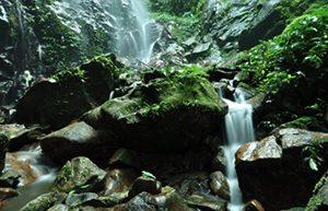 Kledang Saiong Forest Eco Park