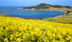 Cheongsando-Island