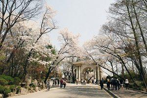 Kyung-hee University