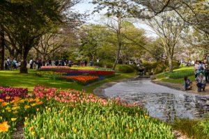 Showa Memorial Park, Tokyo