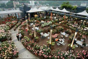 Sky Rose Garden