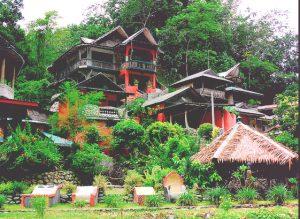 bukit-lawang-tempat-wisata-di-asia-tenggara