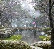 10 Taman Kota Di Jepang Paling Indah Dan Terbaik