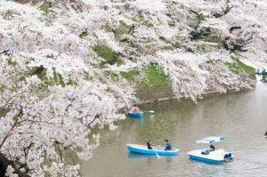 Taman-Chidorigafuchi
