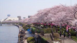 Taman-Sumida-di-Taito-ku