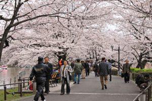 Tempat-Wisata-Unik-dan-Indah-di-Jepang
