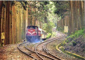 Alishan-Forest-Railway