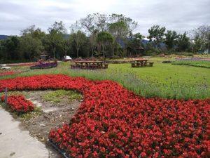 Chishang Town Nong Hui Si Ji Hua Hai