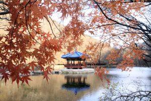 Paviliun-Musim-Semi-dan-Musim-Gugur