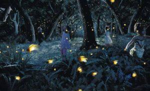 Kampung Kuantan Firefly Park