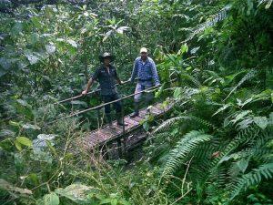 Kasaguadua Natural Reserve
